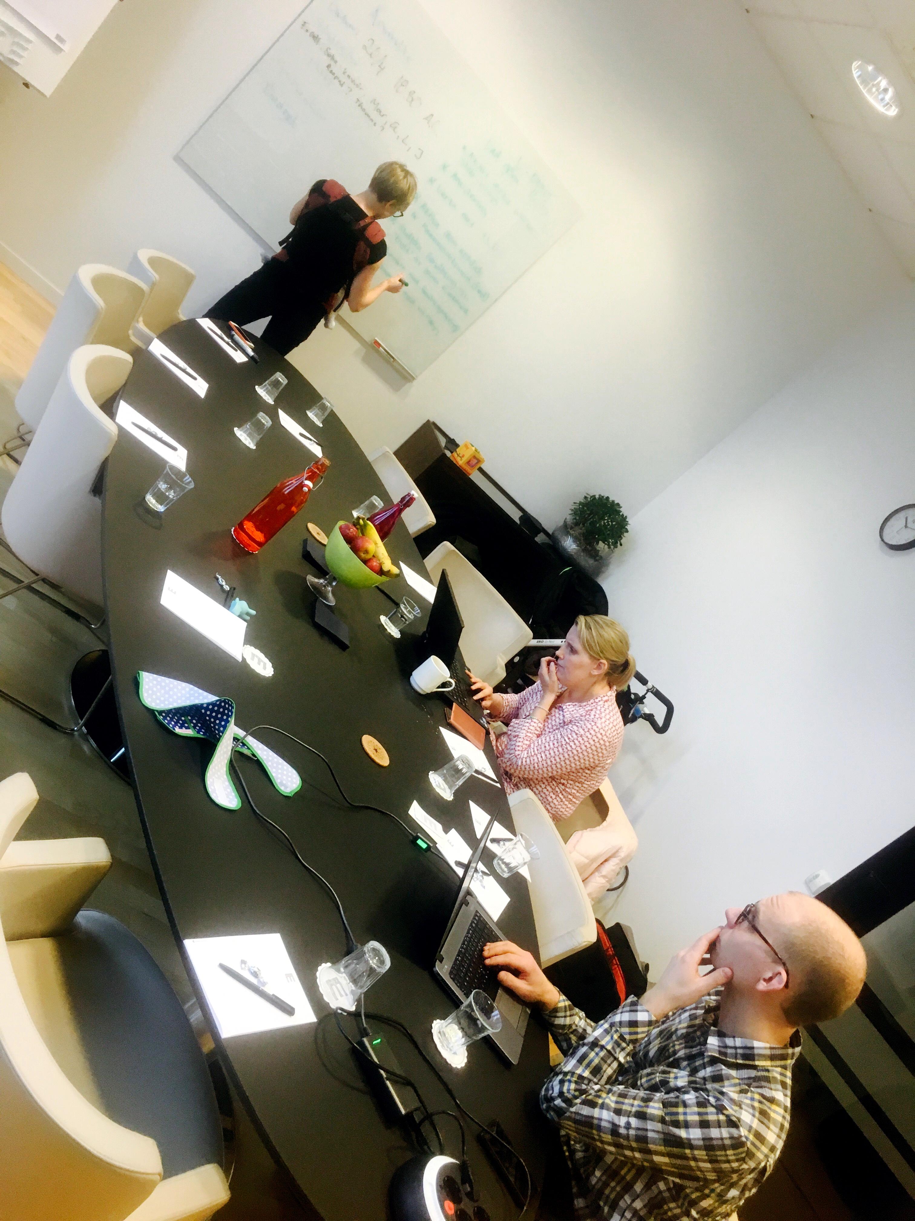 Styrelsen samlades i Lund för att planera 2016 års verksamhet.