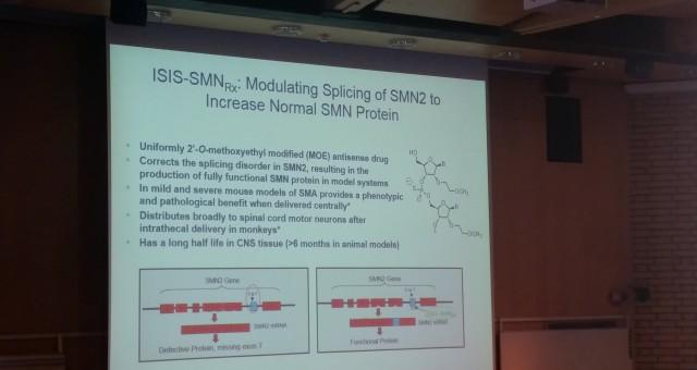 NSMA deltar på ett nätverksmöte för neuromuskulära sjukdomar